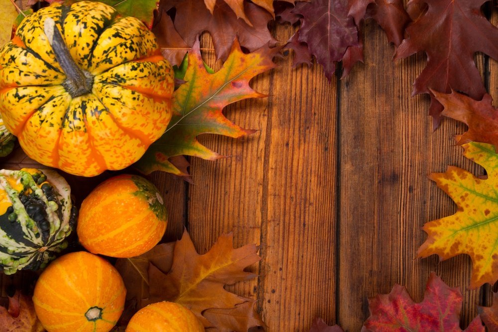 5 ways to help your loved one through thanksgiving dinner walden